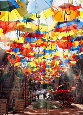 gula paraplyet